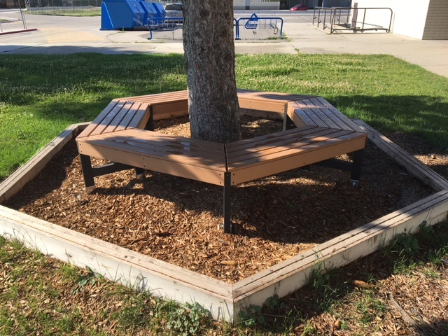 Tree Hugger Bench.jpg